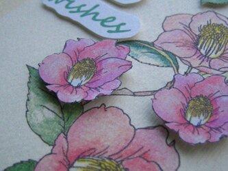 がんばってねカード◇2L白色カード 【春桃色 藪椿5輪】(1枚)の画像