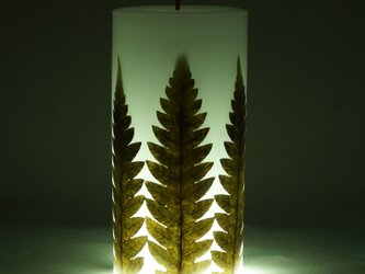GREEN CANDLEの画像
