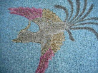 染見本生地 尾長鳥の画像