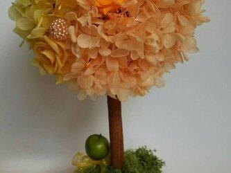 オレンジ&イエローのトピアリーの画像