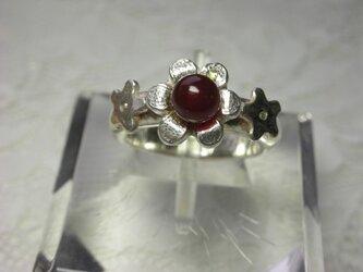 小さな花のリングの画像