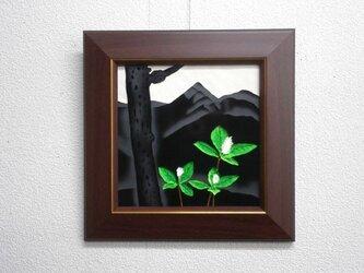 なつかしの山・思い出の花シリーズ「釈迦ヶ岳・ヒトリシズカ」の画像