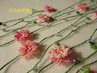 矢車菊の早春ラリエットの画像