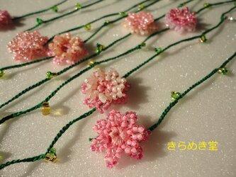 矢車菊の春色♬【グリーンラリエット】の画像
