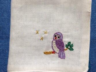 ダブルガーゼの刺繍ハンカチ☆梟と夜空の画像