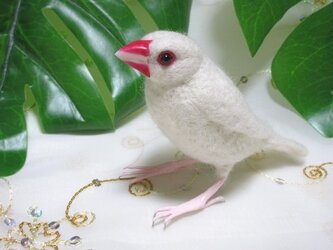 羊毛フェルト 白文鳥の画像