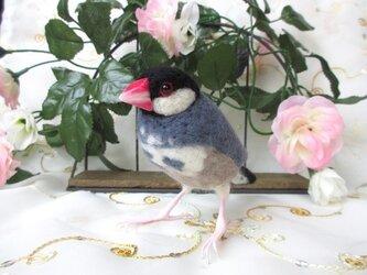 羊毛フェルト かわいい文鳥 の画像