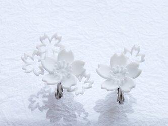 さくら咲くmini・イヤリングの画像