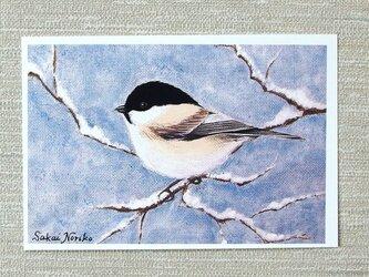 「雪と小鳥・その1」(お好きなポストカード2枚)の画像