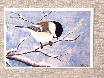「雪と小鳥・その2」(お好きなポストカード2枚)の画像