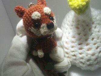 気分屋編み雑貨【柴犬】の画像