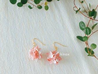 紫陽花のピアス ピンク系の画像