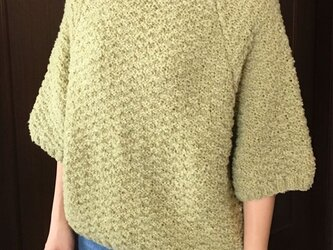 ラグランスリーブのセーター(ウコギ)の画像