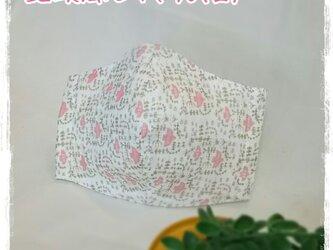 (L)ワイヤ入り立体マスク*北欧風とり*ピンクの画像