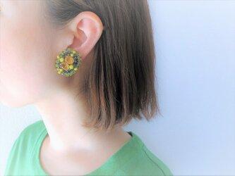 ヴィンテージイヤリング vintage earrings <ER-RBylgr>の画像
