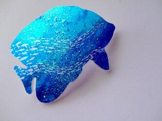 アートバレッタ(エンゼルフィシュ) 魚群【送料無料】の画像