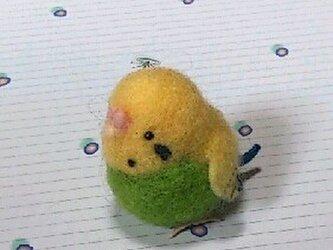 羊毛フェルトdeセキセイインコ②の画像
