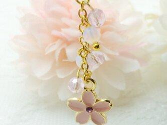 冬桜 ピンクオパールの画像