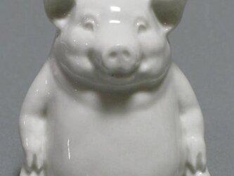 豚、白磁、上絵素材。ポーセリンアート、ポーセラーツ。の画像