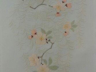 春の錦の画像
