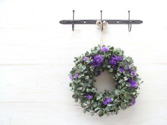 ユーカリのリース (purple)の画像