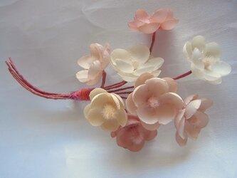 淡いピンクの梅小花コサージュの画像