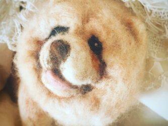 羊毛フェルト ChowChowの画像