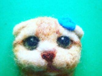 羊毛フェルト猫ブローチの画像