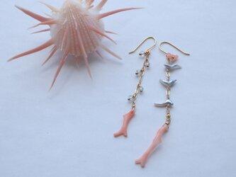 【再販】桃色枝珊瑚とアコヤケシパール・アクアマリンのピアスの画像