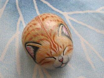 石猫  「ほっこりジンジャー」の画像