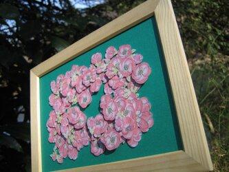 A5型額縁入り【草木瓜】無地カード with 緑色背景の画像