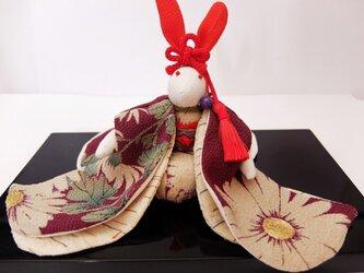 大輪の菊の振袖を着たうさぎさんの画像