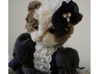 【毛糸の猫】ネコの女の子(マリン)の画像