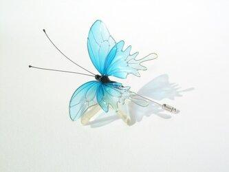 蝶ハットピン-Blue butterfly-の画像