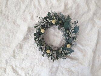 green wreath*03の画像