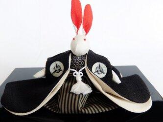 紋付袴のうさぎさんの画像