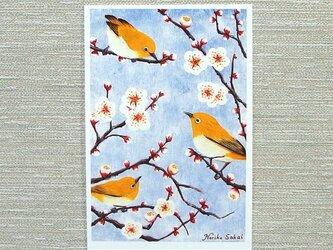 「梅とメジロ・その1」(お好きなポストカード2枚)の画像