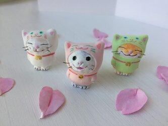 春色の猫をかぶった猫さん〜グレー白×桃色〜の画像