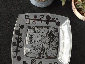 ガラスの角皿   猫猫ネコの画像