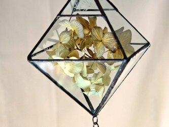 ガラスのテラリュウム・サンキャッチャーの画像