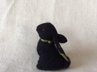 ウールの黒い子うさぎの画像