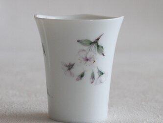 桜のカップ~Bの画像