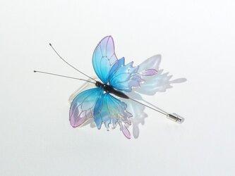 蝶ハットピン-Iridescent butterfly-の画像