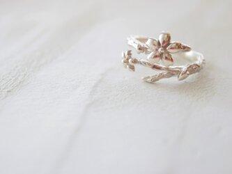 【桜リング】–指輪–の画像