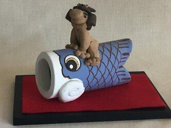 鯉のぼり 青の画像