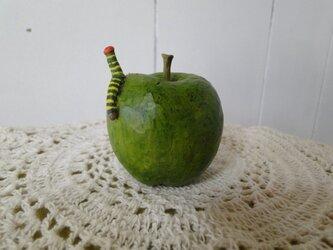 アオバセセリの幼虫とみどりのりんごの画像