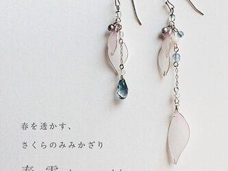 【春季限定】さくらのみみかざり 春雪【セット販売】の画像