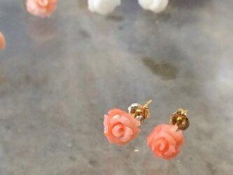 ★sale★珊瑚のバラピアス K18【FP080】の画像