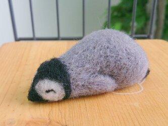 ペンギンだって眠いんです「たれぺんぎん」の画像