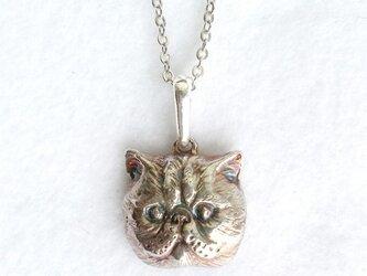 ぺちゃんこねこ・silver925製ペンダント(猫・ネコ・にゃんこ・エキゾチックショートヘア)の画像